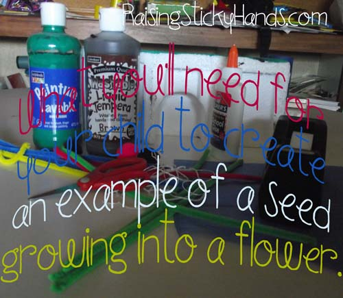 What you'll need for your child to create an example of a seed growing into a flower